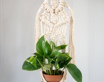Macrame Wall Plant Hanger in Cotton with Circle Design and Tassels