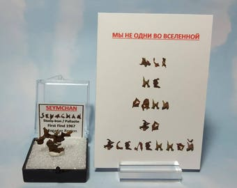 SEYMCHAN Pallasite Meteorite Fragment Specimen With Mind Bender Seymchan Fragment Writing  Limited Edition Card Translated To Russian
