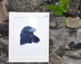 Raven IV -  Original Watercolor Painting, painted by C.Raven - mounted to fit 10x8inches frame opening