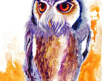 Owl Watercolor Fine Art Print on Paper, Metal, or Bamboo