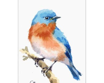Bluebird, Original Watercolor Painting, Blue Bird Watercolor 5 x 7 inches