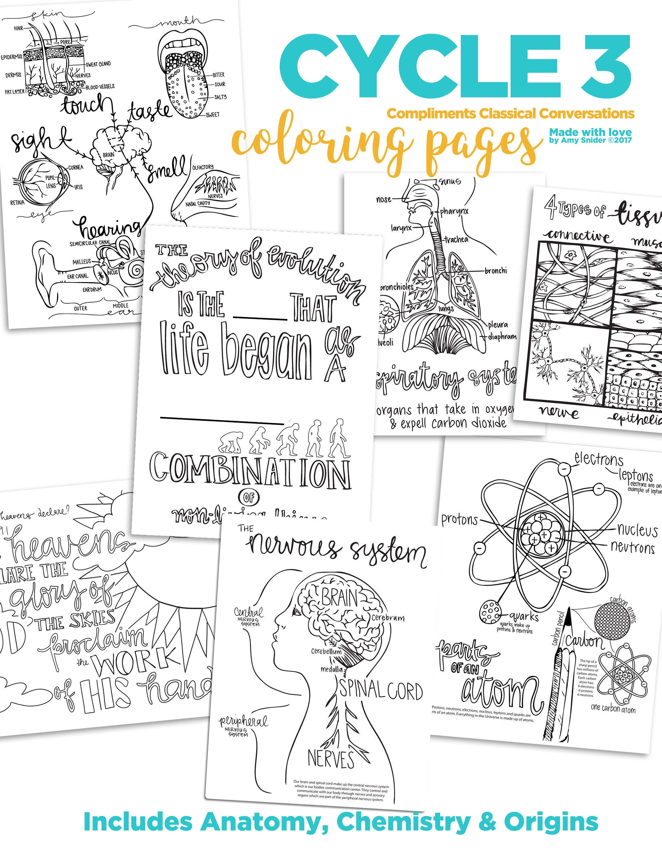 science coloring pages classical conversations cycle 3