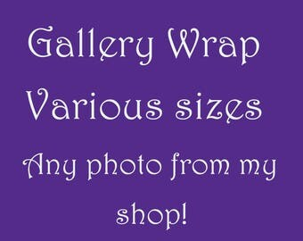 Gallery Wrap with your choice of photo from my shop!  Nature photos!  Trees! Flowers! Sunsets! Horses!