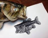 Largemouth Bass fishing, ...