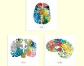 "Human Brain Print Set - Set of Three 12"" x 12"" Watercolor Prints - Neuroscience, Neurology, and Psychology Art - Brains by J. Sayuri"