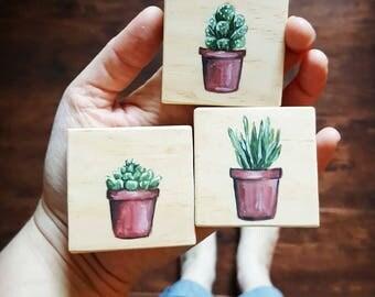 "Set of Three Succulent Paintings on Pine, 2x2"""