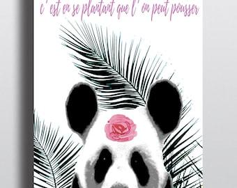 Panda illustration poster