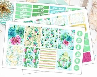 Succulents Weekly Kit Erin Condren Vertical, Succulents Weekly Kit Planner Stickers  – Sticker Sale, Sized for the Erin Condren - 4976
