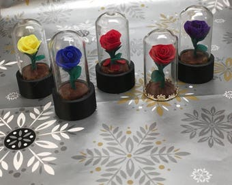 Mini Beauty and the Beast Rose domes, Set of 5, Beauty and the Beast wedding, Beauty and Beast Rose, Enchanted Rose, rose dome,rose in glass