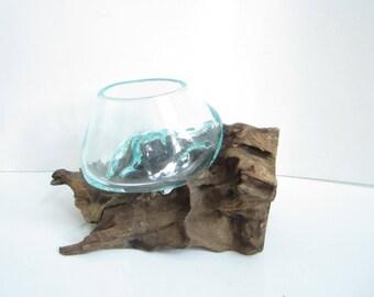 "Molten Glass on Driftwood Base-8.5""x 5.5""-Air Plant Terrarium-Fish Bowl-Eco Planter-Hand Blown Terrarium Glass-Driftwood Decor-Unique Gifts"