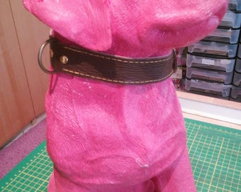 collar dog 31/37/2.3 cm Leather Brown, beige Velvet