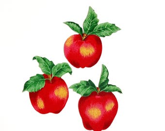 apple kitchen decor. apple magnets, set of 3, apples, apple kitchen decor, fruit decor a
