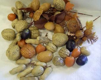 Vintage Retro SSCO Plastic NUTS & Autumn FOLIAGE Peanuts Walnuts Hazelnuts Pecan Almonds Brazil Nuts Chestnuts Hong Kong  *Free Shipping*