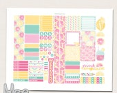 Pink lemonade planner stickers printable kit for use in MINI Happy planner Weekly sticker set Monthly stickers Personal size planner sticker