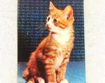 Vintage Kitten Postcard Brown Cat Card Cute Cat Postcard Cat Postcard Collectible Postcard