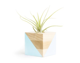 Pastel Blue Pot, FREE SHIPPING, Air Plant Holder, Shelf Decor, Office Gifts, Cute Small Planter, Wood Pot, Air Plant Planter, Gift for Her
