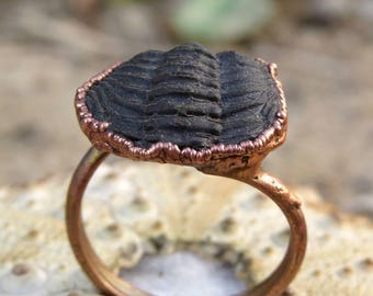 Trilobite fossil ring | Trilobite ring | Trilobite copper ring | Fossil electroformed ring