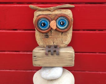 The little OWL with blue eyes