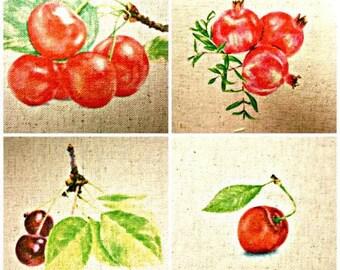 Set of 4 transfers fabric cotton-linen fruit theme