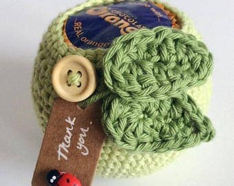 Thank you, apple for teacher gift, treat disguise for chocolate orange, crochet cover, teacher gift, apple cosy, red or green, ladybird