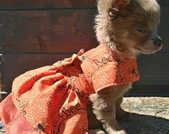 Halloween Dog - Chihuahua Clothes - Chihuahua Dress - Dog Dress - Small Dog Clothes - Harness Coat - Chihuahua - Halloween Fancy Dress