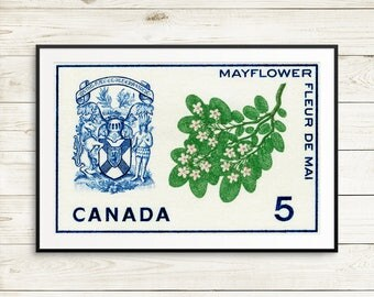 halifax canada, nova scotia, halifax nova scotia, nova scotia provincial flower, nova scotia coat of arms, provincial flower nova scotia