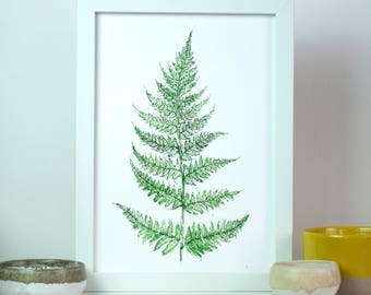 Woodland Fern Leaf Botanical Watercolour Art Print