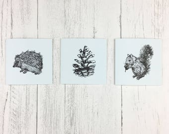 Thank You Notecards / Hedgehog Cards/ Woodland Cards / Small Cards For Wildlife Lover  / Blank Card Set / Nature Lover Gift / Squirrel Card