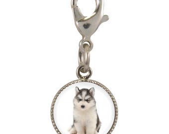 Husky Puppy Image On Silver Plated Clip Charm
