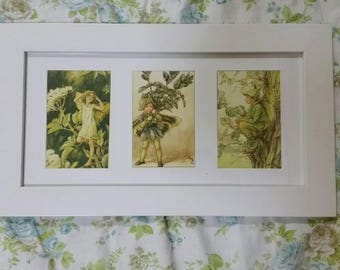 Set of 3 framed Flower Fairy postcards