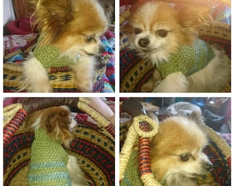 Tiny Dog Sweater
