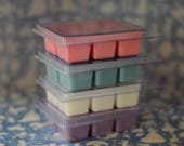 Magically Inspired Melts~ Choose any 4 Scents~Disney candles