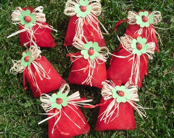 Graduation red organza bags with raffia bow and four-leaf clover with Ladybug wooden mascot