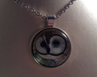 Silver owl necklace with chain
