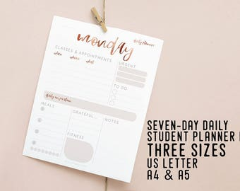 Daily Student Planner, Daily Schedule, Printable Instant Download, Daily Agenda, Productivity Planner, DIY Desk Planner, Academic Planner