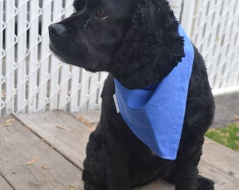 Dog scarf, dog neck scarf, dog fashion, dog accessory, animals, Quebec