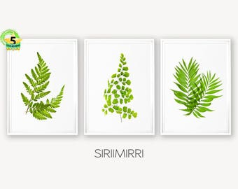 Tropical Leaves, Leaf Print, Fern Print, Tropical Print, Leaf Wall Art, Fern Print Set, Palm Art Print, Botanical Leaf Art, Botanical