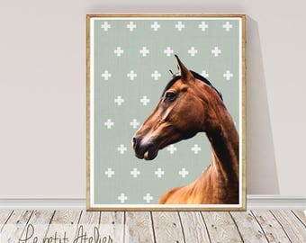Horse Print, Large Printable Wall Art, Colour  Photography, Wall Decor, Digital Download, Horse Decor, Large Horse Poster Print