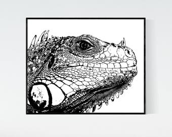 Iguana printable artwork, digital print, lizard closeup black and white 8x10 printable, iguana print, lizard print, instant download