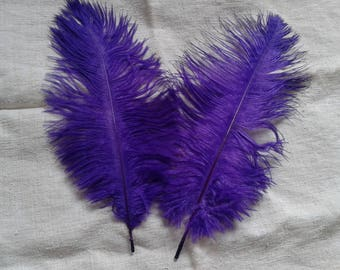 set of 2 Purple ostrich feathers