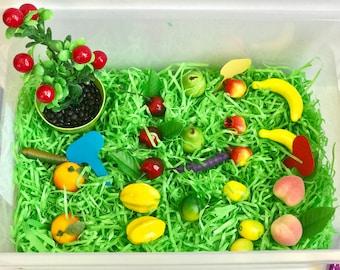 Fruits Garden Sensory Bin