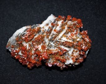 Vanadinit Stufe, Top Kristalle - Mibladen - Marokko - neuer Fund