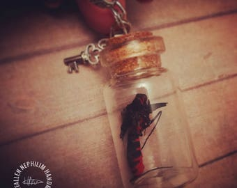 Real Butterfly Body Bottle Pendant with a silver key clip on charm and 18 inch Chain, Genuine Dried Macabre Oddities Necklace