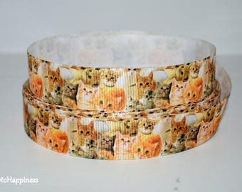 "Cats 1"" Grosgrain Ribbon 961"