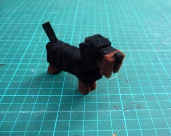 decorative, hard-haired Dachshund dog