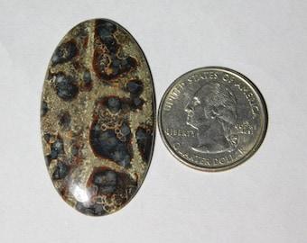 Amazing Natural Plum Wood jasper Cabochon,Loose Stone,Gemstone,Gorgeous jasper Cabochon Excellent Gemstone 100%Natural 38.05cts.(45x25x4)mm