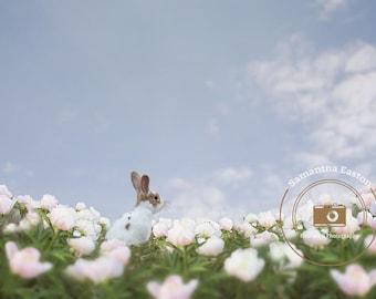 Easter Digital Background, Easter Digital Backdrop, Flower Overlay, Flower Field Backdrop, Flower Field Background, Easter gift, PNG, Spring