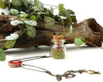 Flora Necklace: plant and bohemian necklace, vial succulent pendant, brass and mini succulent plant, nature fantasy retro style