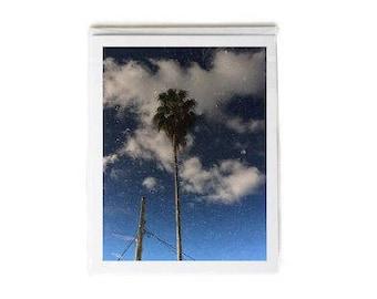 Palm Tree & Pole Beneath Clouds and Blue Sky Notecard