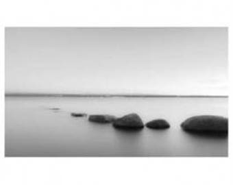 Black and White Rocks Artwork Canvas